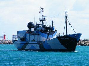 steve irwin ship