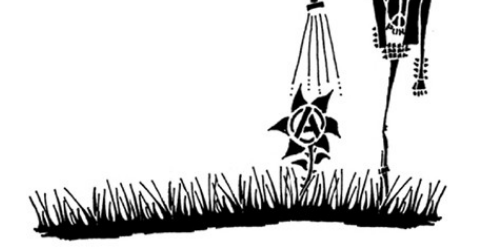 katarzis-3-crop